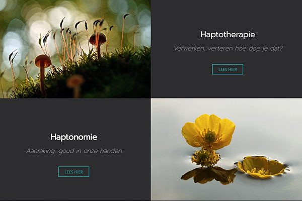 Haptotherapie Schiedam | Exclusief Webdesign door Pink Sun